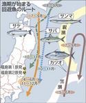 回遊魚ルート.jpg