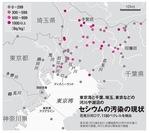 関東の河川湖沼のセシウム汚染の現状.jpg